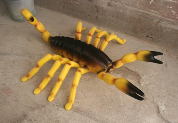 玻璃钢蝎子雕塑